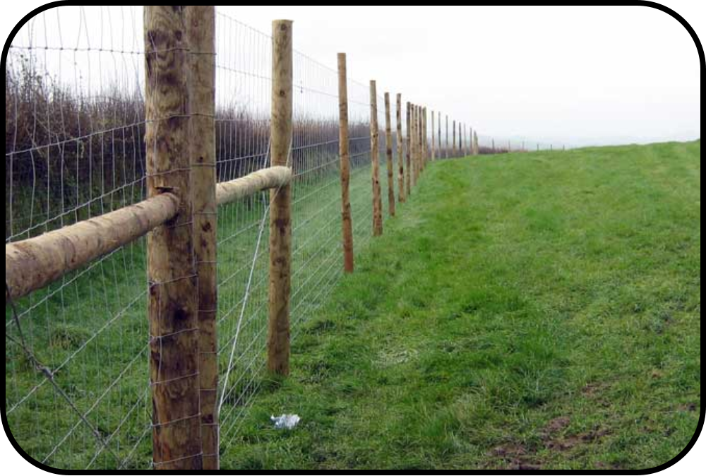 Haslemere All Fencing