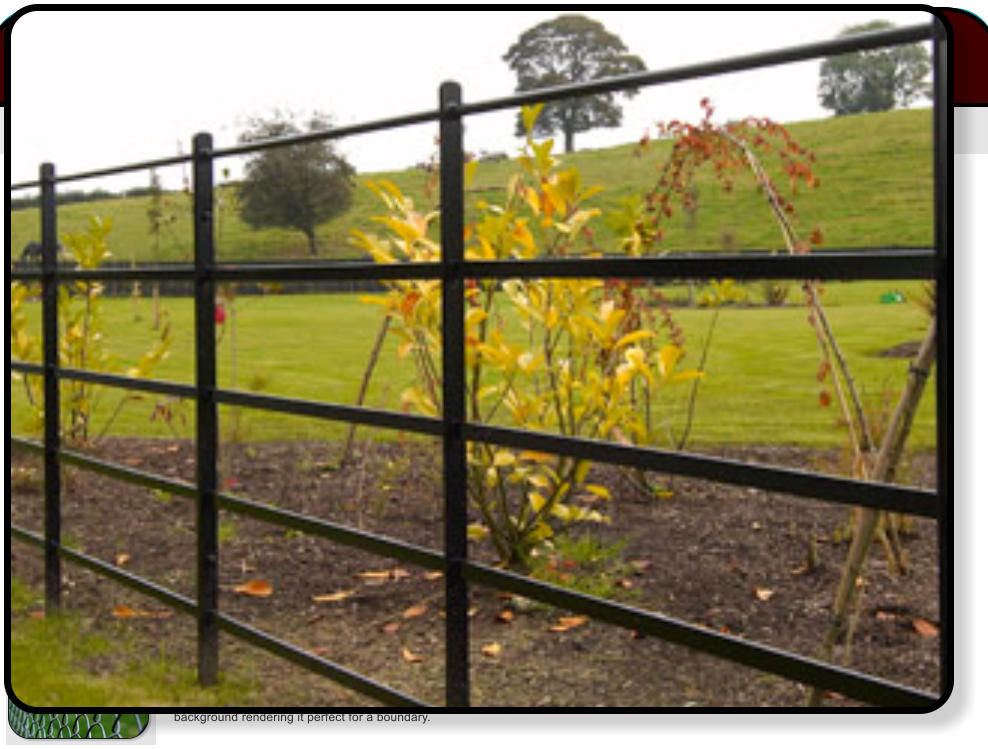 Estate Railings Fencing Has A Classic Style That Everyone Associates With Large Country Parks And Rural Estates Modern Are Galvanised
